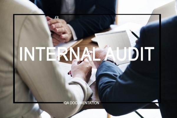 internal-audit-construction-company